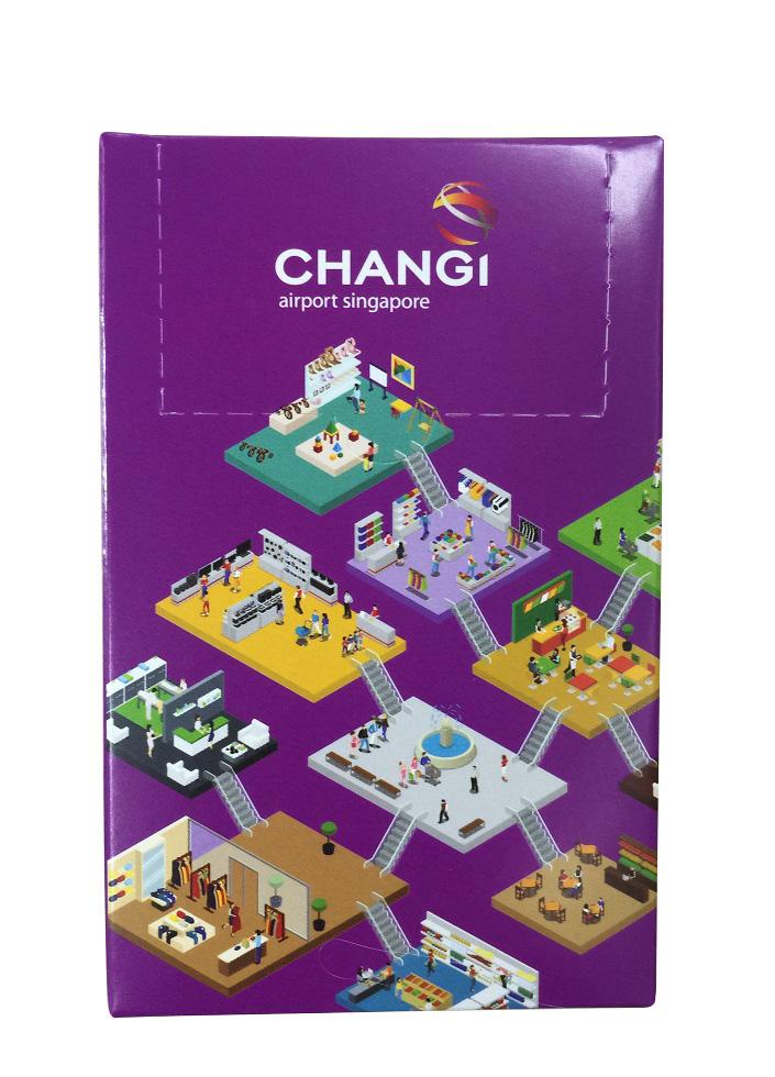 Changi Airport Singapore 1