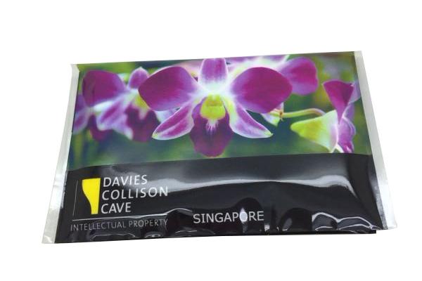 Davies Collision Cave (3)